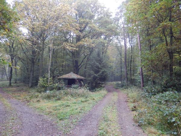 11 Schutzhütte am Berschberg auf 202hm