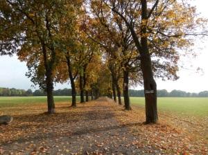 Nähe Haanhof