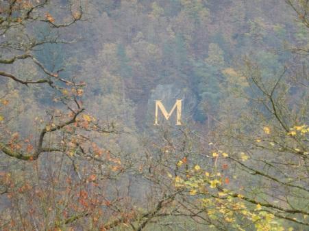 Ein großes goldenes M - für Martin?