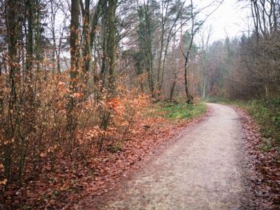 schöner Weg bei Heiderhof