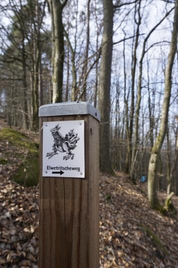Elwetritscheweg