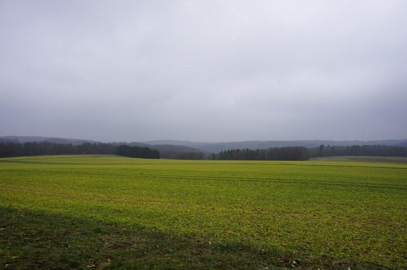 Hunsrückhöhen bei Heyweiler