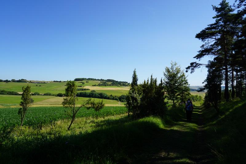 Von Ripsdorf aus auf dem Weg zum Lampertstal