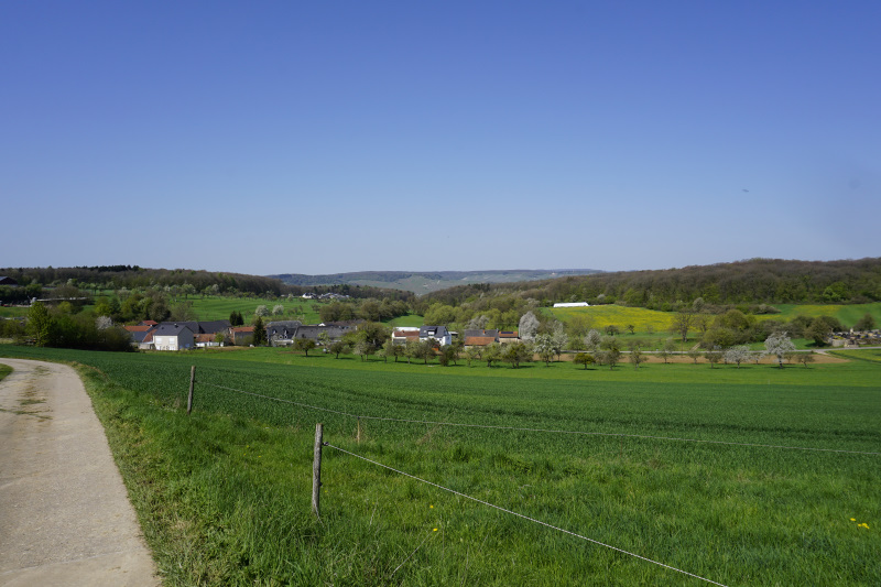 Landschaft zwischen Wochern und Tettingen