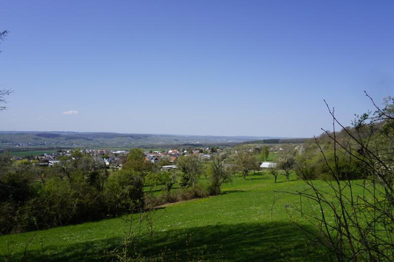 Ausblick vom Moselsteig auf Oberperl