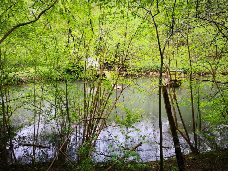 Teiche im Tal des Uelpebachs